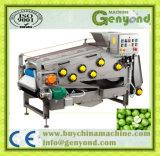 Imprensa industrial da correia para o processamento da fruta e verdura