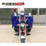 triciclo da carga 150cc com CEE (TR-11)