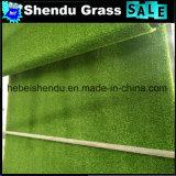25mmの二色および多色刷りの人工的な草のカーペット