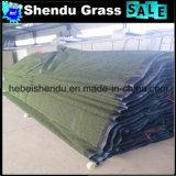8800dtexヤーンが付いているアジア市場のために人工130stitch草