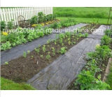Solution idéale de contrôle des tissus de mauvaises herbes PP