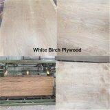 madera contrachapada natural del abedul de 18m m para el grado de los muebles C/D