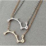 Collana di diamante a forma di delle donne del nuovo di modo dei monili merlo acquaiolo dell'acciaio inossidabile