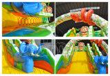 El tema pacífico de los animales inflable seca la diapositiva para los parques zoológicos (CHSL640)