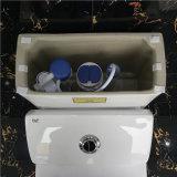Valvola a livello della stanza da bagno di Ovs delle migliori tolette di ceramica di disegno