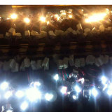 luz de bulbo da noite do diodo emissor de luz da ESPIGA da lâmpada do projector de 1W 12V
