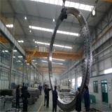 Rolamento quente 010.30.560/630/710 da turbina de vento da venda de Zys