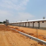 Équipement de contrôle de volaille pour la construction de poulet et d'acier