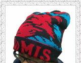 Chapéu feito malha morno do Beanie do inverno por atacado com projeto personalizado (1-3582)