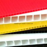 visualizzazione di 1000*2000 1200*2400mm pp Corflute Coroplast Correx/scuderia di /UV della scheda/stampa del contrassegno