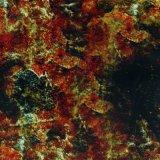 [كينغتوب] رخاميّة حجارة تصميم [هدرو] طباعة ساحل صورة [بفا] فيلم هيدروغرافيّة [برينتبل] ماء إنتقال طباعة فيلم مع [1م] يوسع [ودف248-2]