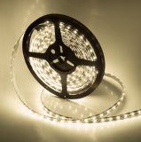 2835 singolo Color 60LED/M LED Strip con l'UL