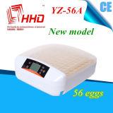 Incubatrice delle uova di controllo di temperatura automatica di Hhd 56 mini (YZ-56A)