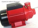 Pompa ad acqua calda di monofase della pompa Qb60 di estate