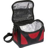 Изолированный мешок пикника обеда охладителя пакета