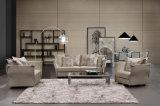 Sofá Home moderno popular da tela da sala de visitas da mobília ajustado (HC1486B)