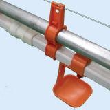 Fußboden-züchtend Bratrost Proeuction Geflügel-Gerät