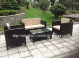 Meubles en osier de jardin de rotin de sofa de meubles extérieurs (GN-9078S)