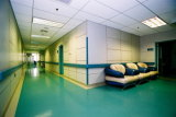Intérieur Waterproof HPL Hospital Wall Paneling Designs