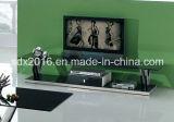 TVの立場/居間の家具/ステンレス鋼表/ホーム家具/現代表/ガラス表/緩和されたガラス表Dg015
