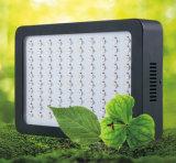 온실 가득 차있는 스펙트럼 300W LED는 빛을 증가한다