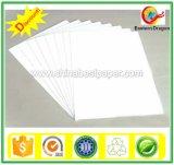 Paper Board Duplex avec Gris / Blanc Retour