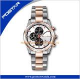 Orologi degli uomini di qualità di marca a+ dell'acciaio inossidabile di Swatchful del Ce