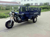 Motocicleta de três rodas para adultos