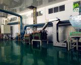 Chinesische Kürbis-Startwert- für Zufallsgeneratorkerne mit hochwertiger AA