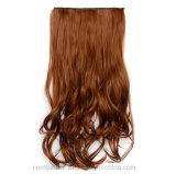 Cinque schede ed estensione lunga dei capelli ricci dei capelli