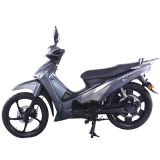 OEMの移動性の電気スクーター中国製