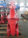 Поднимая запорные заслонки стержня усаженные металлом (DIN3352-F4)