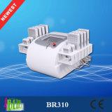 Redução não invasora do Cellulite de Effcetive da máquina de Lipo com diodos importados