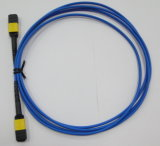 Data TransmissionのためのMPO Optic Fiber Cable