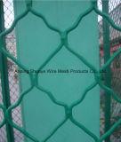 La rete fissa ricoprente verde del campo da pallacanestro di collegamento Chain del PVC, rete metallica del foro del diamante mette in mostra la rete fissa della corte
