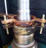 Eixo da indução de Lp-Sk-2500c que endurece a máquina-instrumento