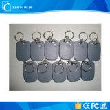 Impresión colorida RFID posible Keychains/Llaveros/Keyfob elegante de la insignia
