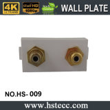 熱いSelling Gold Plated 2rga Module Welding Audio Wall Plate