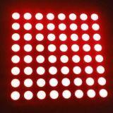 Poids léger d'intérieur de module de la matrice de points DEL