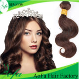 Brown escuro Malaysian Human Virgin Hair com Remy Hair Wig
