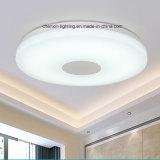 ホームのための最新の熱い販売の現代円形の天井灯の据え付け品