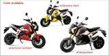 Elettro bici rigogliosa superiore del motociclo 2016 che assomiglia al motociclo
