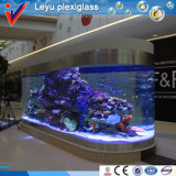 Moderno e Luxury Acrylic Fish Tank