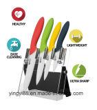Suporte magnético acrílico da faca da qualidade super