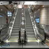 Escada rolante elétrica da etapa do passageiro da pessoa da alameda 4