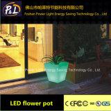 16 colores de plástico Pot Flor LED