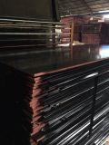 triplex van de Verkoop van 18mm*1250mm*2500mm het Hete Zwarte Film Onder ogen gezien voor Shuttering (w15097)