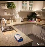 Anti controsoffitti della cucina del quarzo della graffiatura