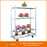 Potted Plants/Flowersのための輸送Carts Flower Display Trolley HorticulturalデンマークのTrolleys