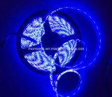 좋은 Qaulity 저가 SMD 3528 5050 유연한 LED 지구